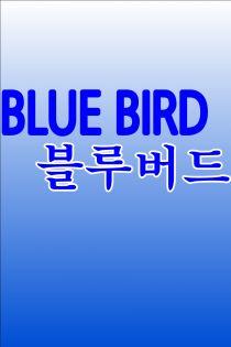 Blue Bird (블루버드)