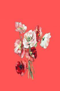 독초(毒草): 아로새기다