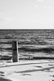 고대 이집트로 왔는데 침실 노예가 되었다