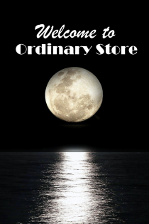 Welcome to Ordinary Store