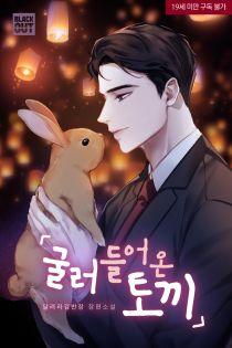 굴러들어온 토끼